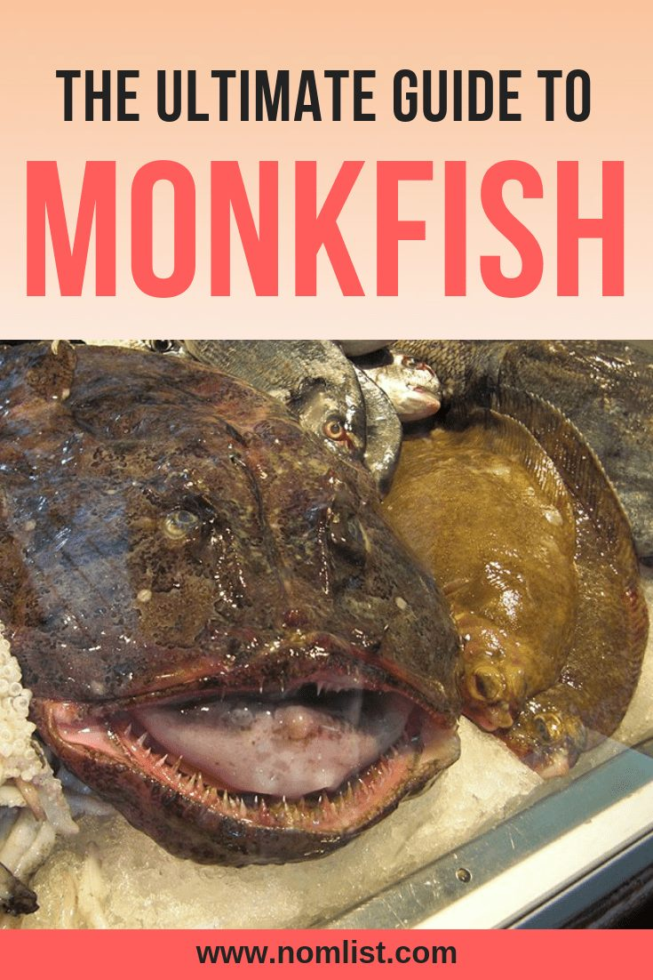 Don't let its ugly looks scare you, this big fat fish is considered one of the tastiest in the ocean. Check out our ultimate guide to Monkfish! #monkfish #fish #worldfish #ediblefish #allaboutfish #fishrecipes