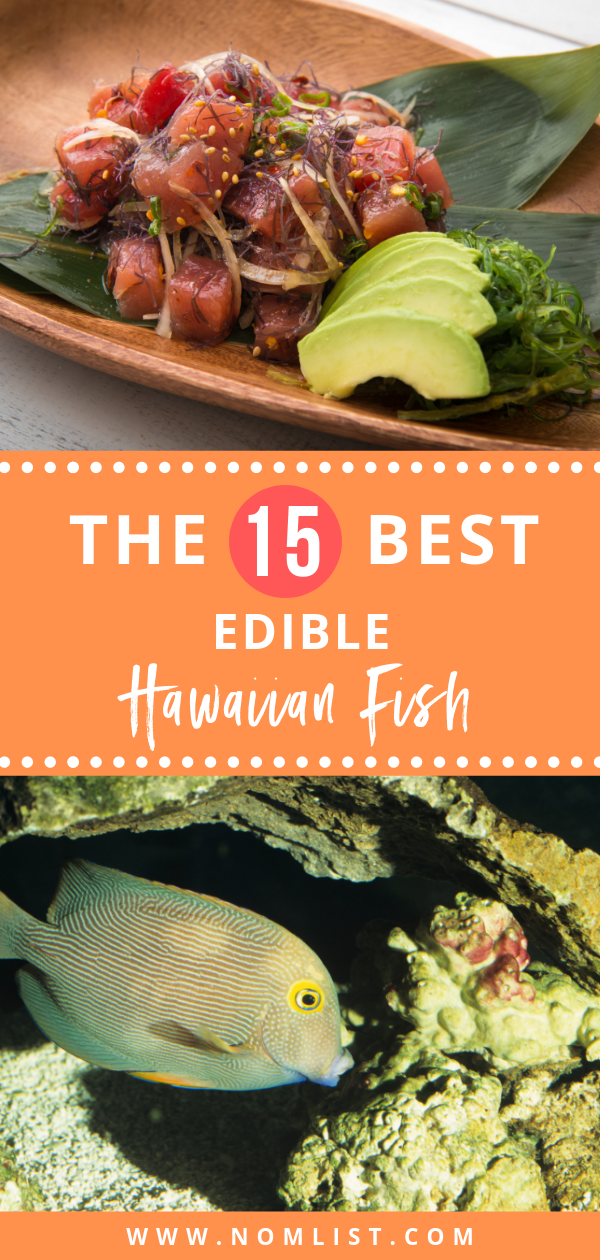Whether you are a local, or you are planning a vacation to Hawaii, here is an ultimate guide to all the edible Hawaiian fish to try out! #hawaiianfish #hawaii #hawaiian #hawaiinfood #fishing #fish