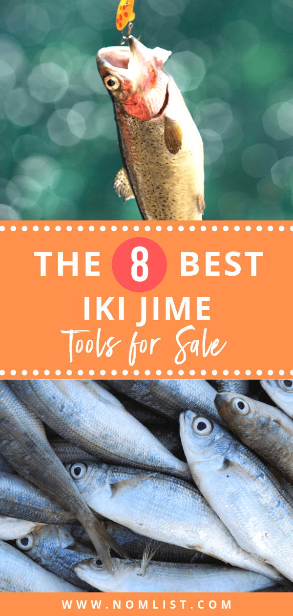 Iki jime is a method of killing fish, by inserting a screwdriver shaped tool, or a sharp narrow knife, into the brain of the fish. It a humane way to slaughter fish, as it is incredibly quick and painless for the fish. The Best Iki jime tools can be really useful when out fishing, as it offers an easy, hassle-free way to slaughter the fish you catch, and it is a really quick method to use as well. #ikijime #fishing #fish #fishtools #fishingtools #fishinggear #outdoors #flyfishing #allaboutfish
