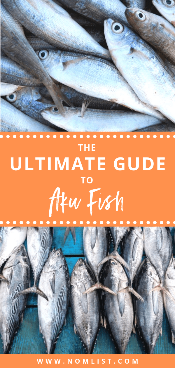 Often underrated due to its smaller size and stronger flavor, aku fish doesn't enjoy the popularity of its albacore, bluefin, and yellowfin brothers. Nevertheless, it is delicious and healthier than all other types of tuna. In this ultimate guide to aku fish, we will show you why you should consider it, how to catch it, and will even reveal a few recipes that you'll love. #aku #akufish #fishing #fish #hawaiianfish #skipjack #skipjacktuna #tuna