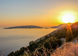 Peljesac Wine Tour